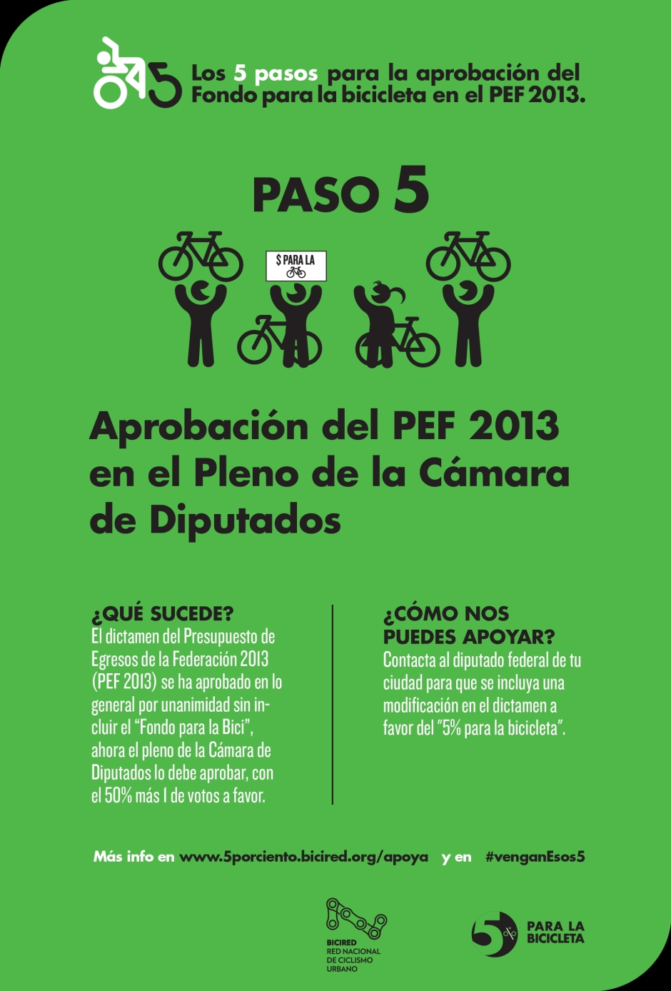 paso5-08