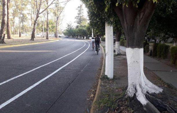 ciclovía-2-610x389